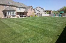 Grass Cutting Services, Landscaping